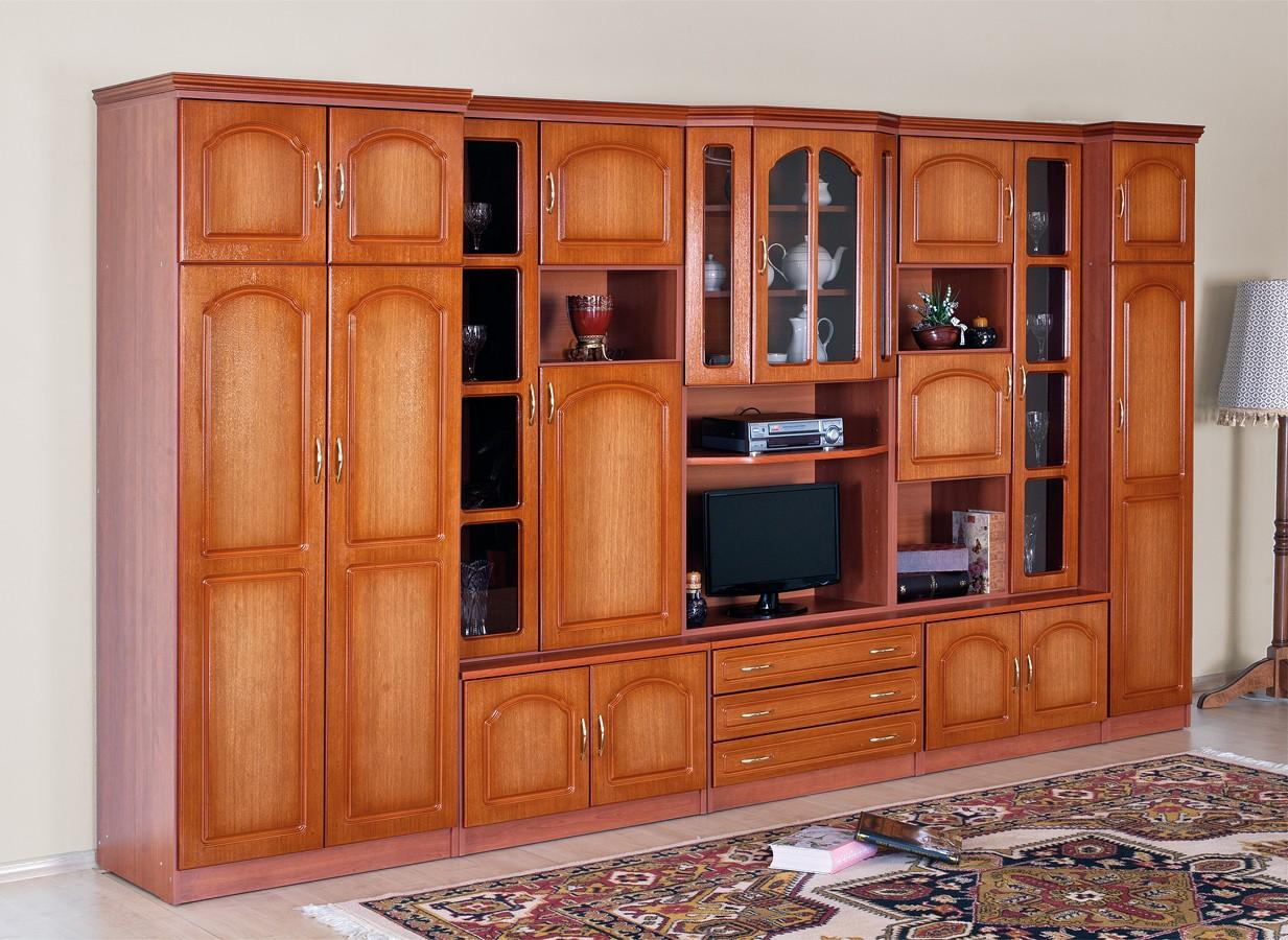 Biblioteca Samara Biblioteci Ilustratie